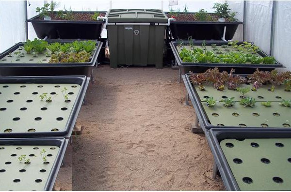 Sanctuary 128 US Aquaponics System With 128 Sq Ft Of Grow Space